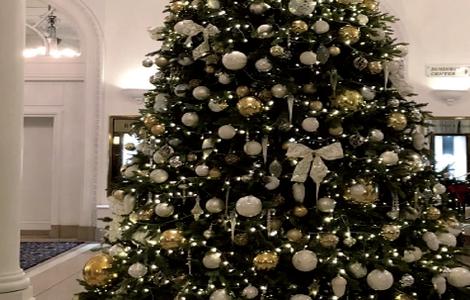 Alberi Di Natale Bellissimi.Alberi Giganti Bellissimi Grandi Alberi Di Natale Artificiali Per Uso Interno Ed Esterno Costruzione In Acciaio Facile Da Montare Certificazione B1 Disponibile Nelle Dimensioni Da 3 Metri A 12 1 Metri